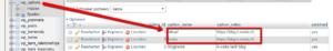 Wordpress wp_options url